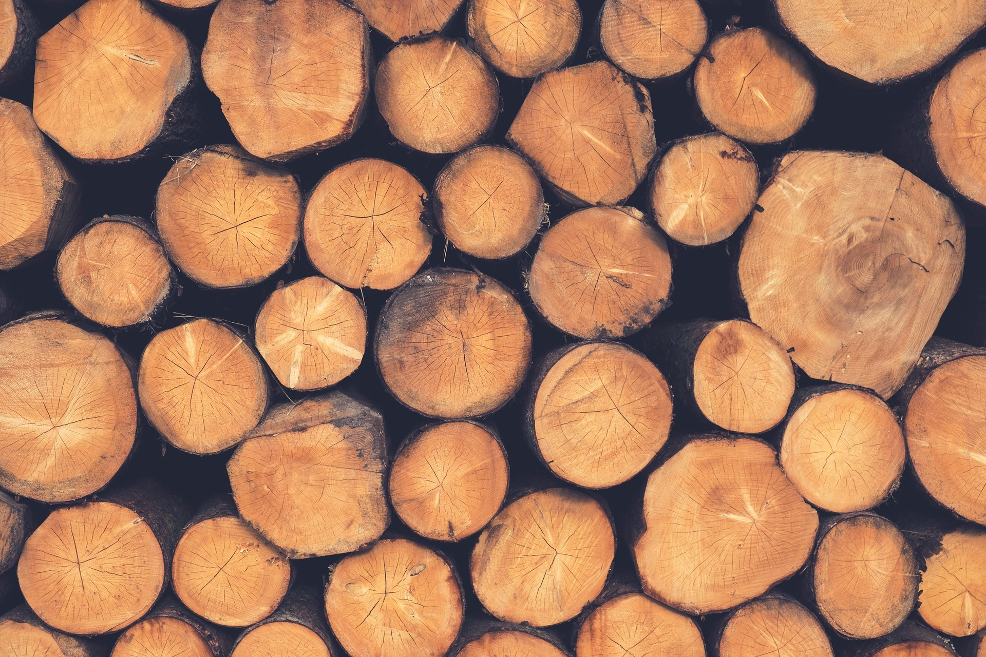 LOGS WALLPAPER